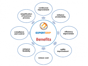 ExpertERP benefits
